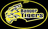 Bangor Tigers JAFC Logo